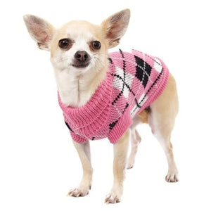 Fashion For Girl Dogs