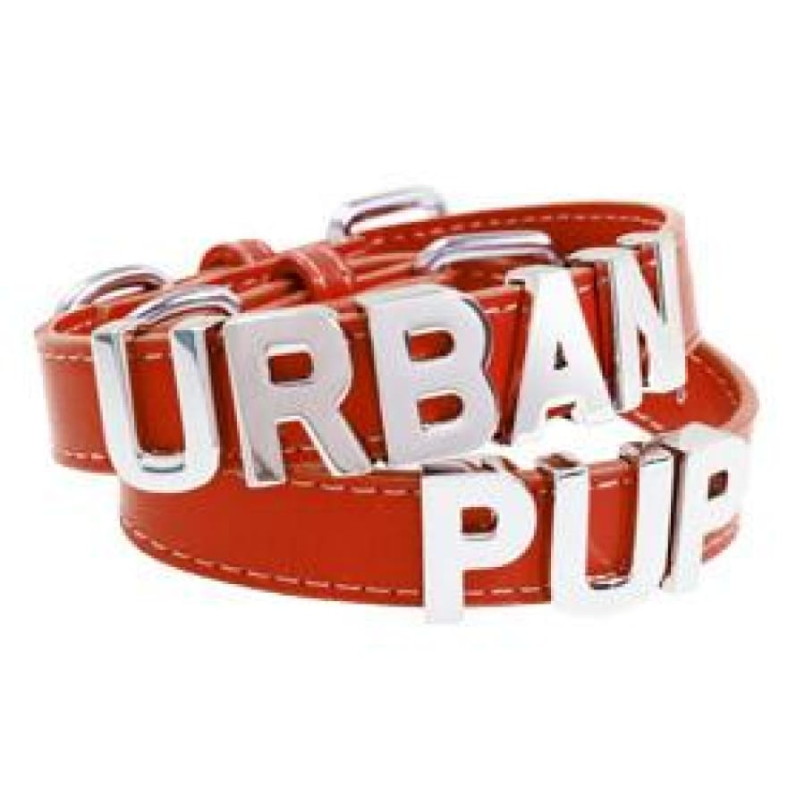 Personalised Leather Chrome Dog Collar In Red - Urban - 1