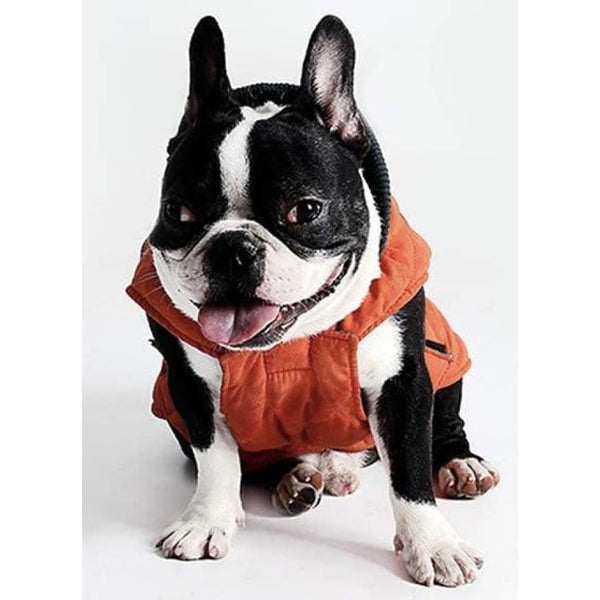 Weatherproof Quilted Bodywarmer Dog Coat In Orange - Posh Pawz - 3
