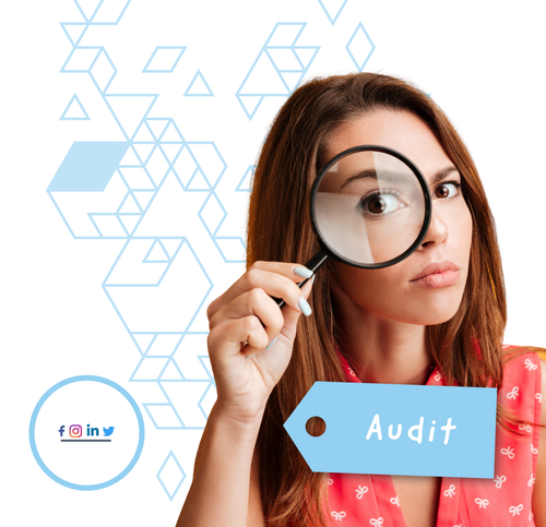 Audit — Social Media Profile