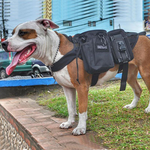 Tactical Molle Service Dog Vest Harness-Shop Deal Anchor