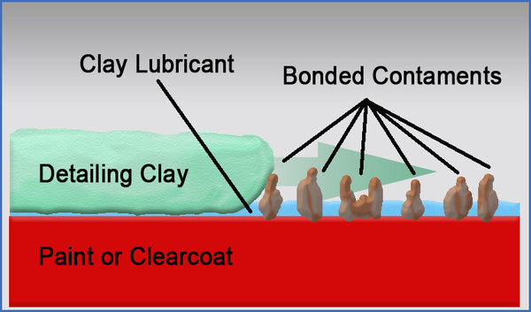 clay magnified diagram