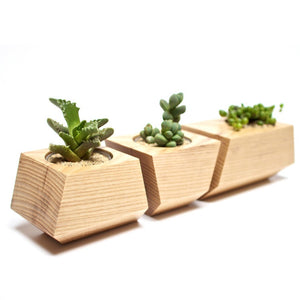 Boxcar Planters (Set of 3)