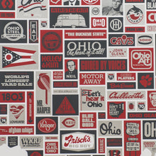 "Everything Ohio 18"" x 24"" Screen Print"