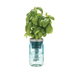 Herb Garden Jar Kit