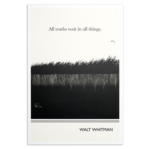 Whitman Grass 13