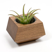 Boxcar Single Planter