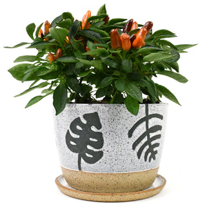 Flora Speckled Wheel Thrown Planter