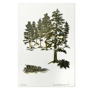 "White Pines 12"" x 18"" Letterpress Print"