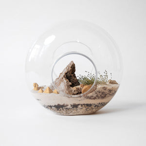 Friday, March 6th - Build a Terrarium with Plant Shop Chicago