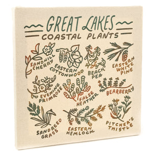 "Great Lakes Coastal Plants 12"" Canvas"