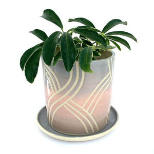 "Misty Pastel Ceramic 4"" Planter with Dish"