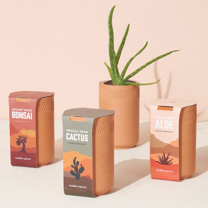 Terracotta Grow Kit