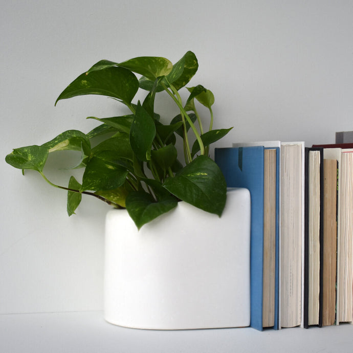 Handmade Ceramic Planter & Bookend