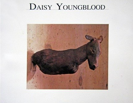 Daisy Youngblood