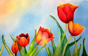 Tulips Two Ways