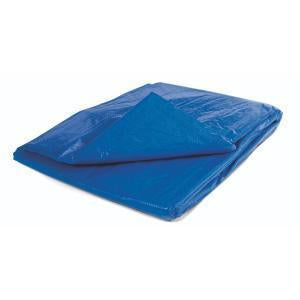 Blue Polyethylene Tarp with Grommets