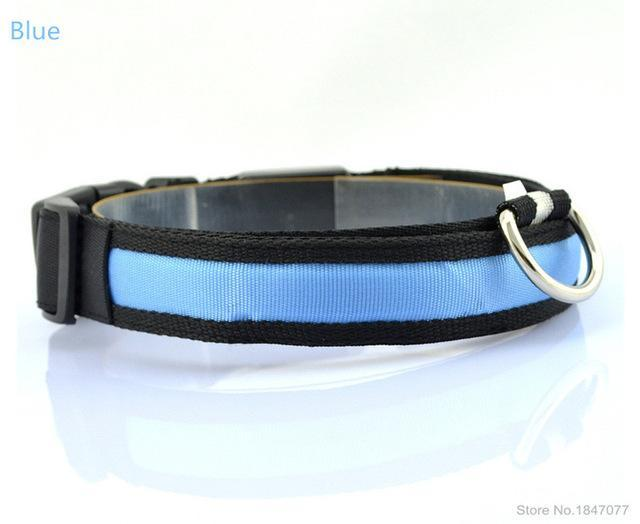 cutecatslovers Blue / S   Neck 35 to 43cm LED Nylon Pet Cat Collar in Multiple Sizes