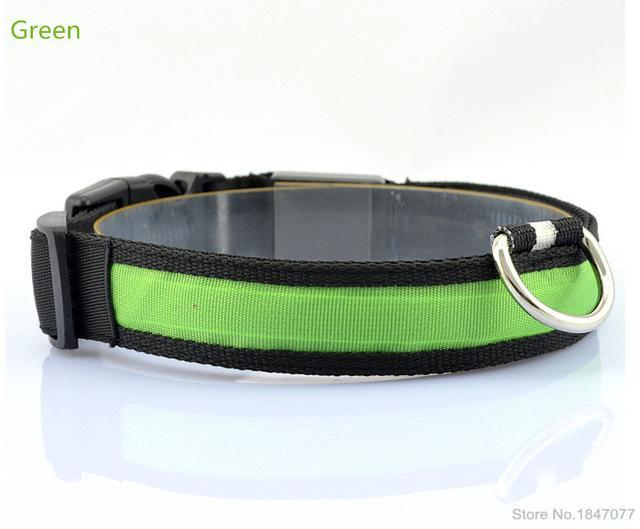 cutecatslovers Green / S   Neck 35 to 43cm LED Nylon Pet Cat Collar in Multiple Sizes
