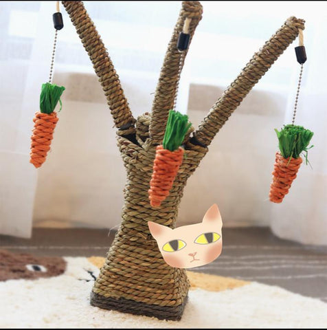 cutecatslovers New style eco-friendly cat toy scratching climber post with Carrots
