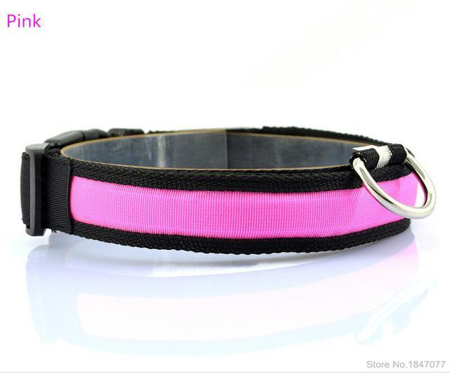 cutecatslovers Pink / S   Neck 35 to 43cm LED Nylon Pet Cat Collar in Multiple Sizes