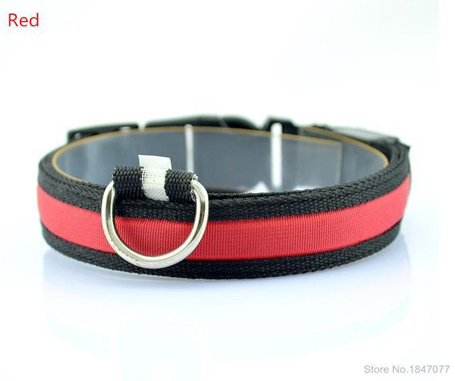 cutecatslovers Red / S   Neck 35 to 43cm LED Nylon Pet Cat Collar in Multiple Sizes