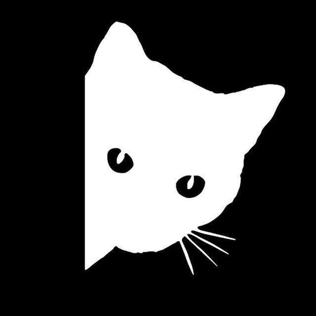 cutecatslovers White Black/White Cat Car Sticker