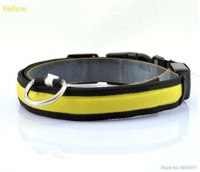 cutecatslovers Yellow / S   Neck 35 to 43cm LED Nylon Pet Cat Collar in Multiple Sizes