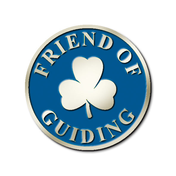 FRIEND OF GUIDING PIN