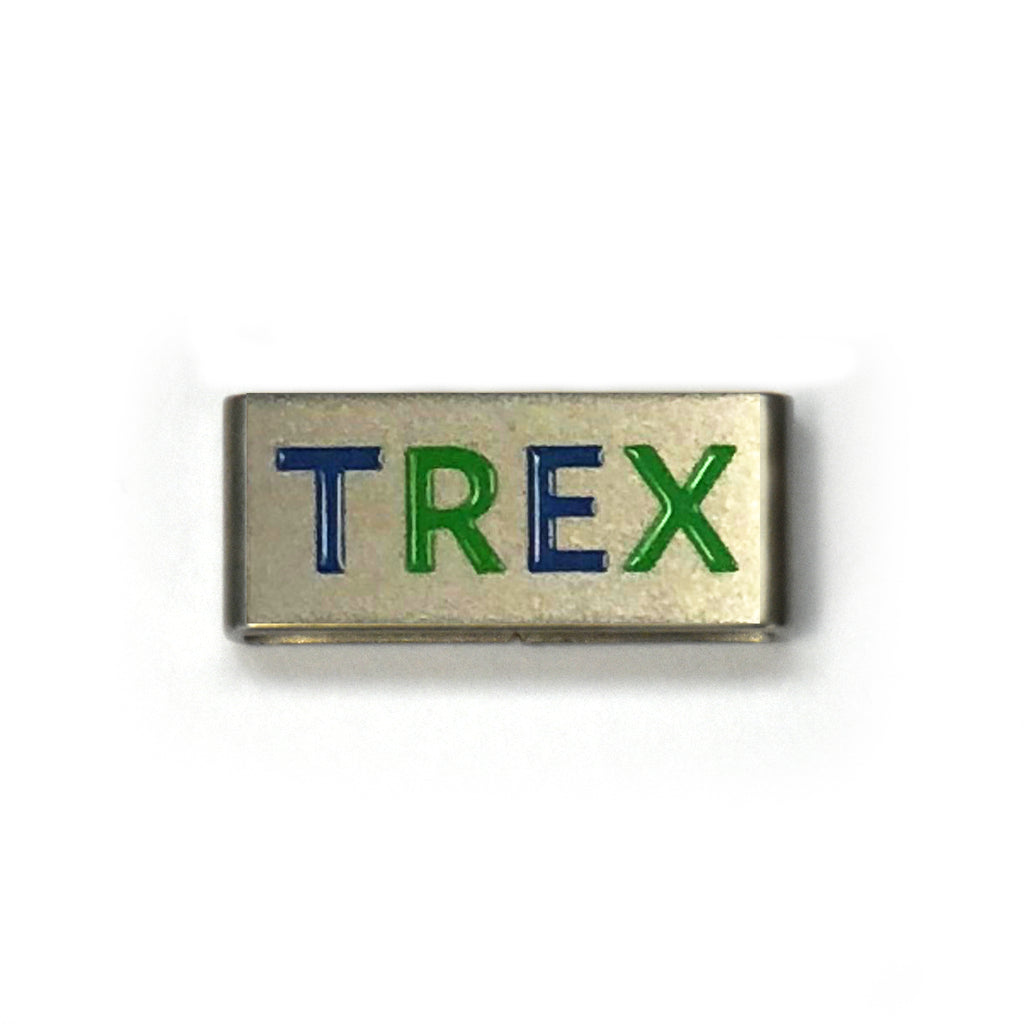 Guiding Charm - TREX COLLECTIBLE CHARM