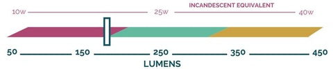 Lumen output scale showing that the Caramel Marble bulb by Relamp produces approximately 175 lumens.