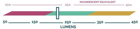 Lumen output scale showing that the Floral bulb by Relamp produces approximately 225 lumens.