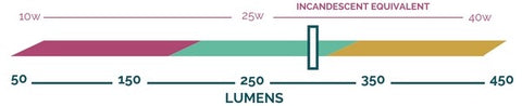 Lumen output scale showing that the Light Pine bulb by Relamp produces approximately 300 lumens.