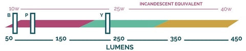 Lumen output scale showing that the Space bulbs by Relamp produce approximately 230 lumens (yellow), 95 lumens (purple), and 65 lumens (dark blue)..
