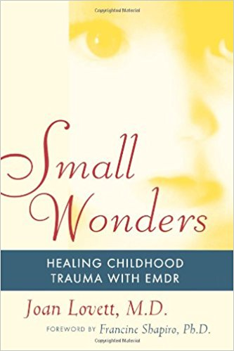 Small Wonders by Joan Lovett