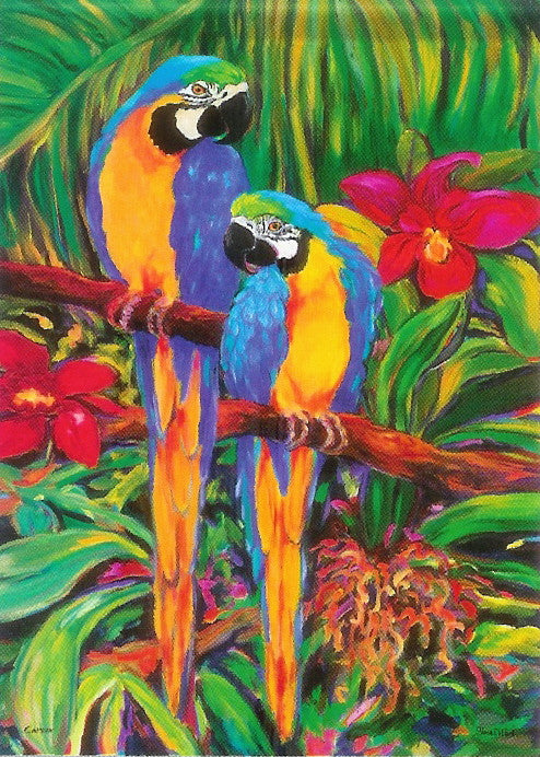 RAINFOREST PARROTS