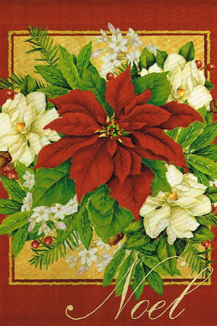 RED POINSETTIA NOEL