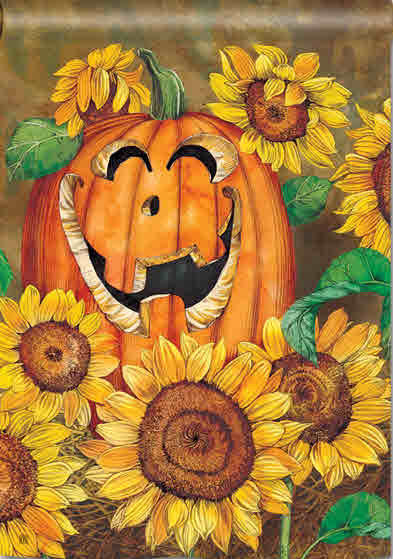 SUNFLOWER JACK