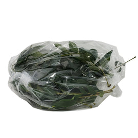Curry Leaves desicart sale