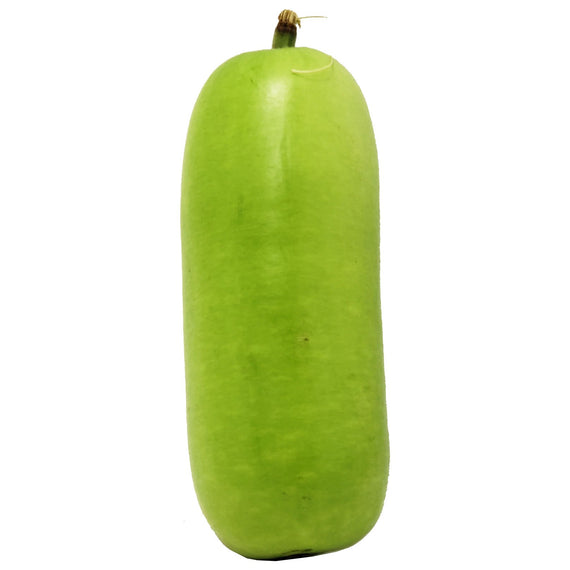 Indian Long Squash (Dudhi) - 1 lb