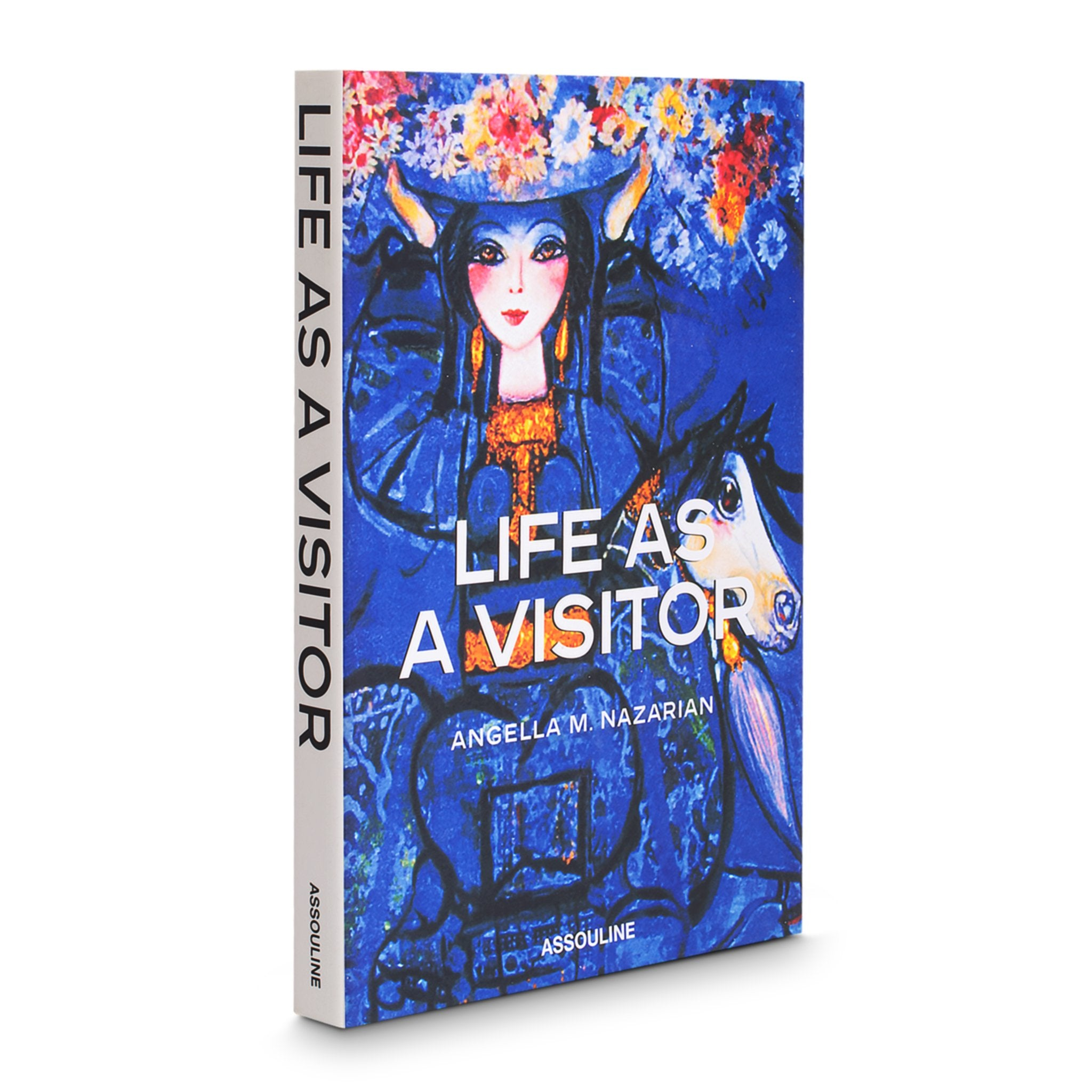Life as a Visitor - Assouline