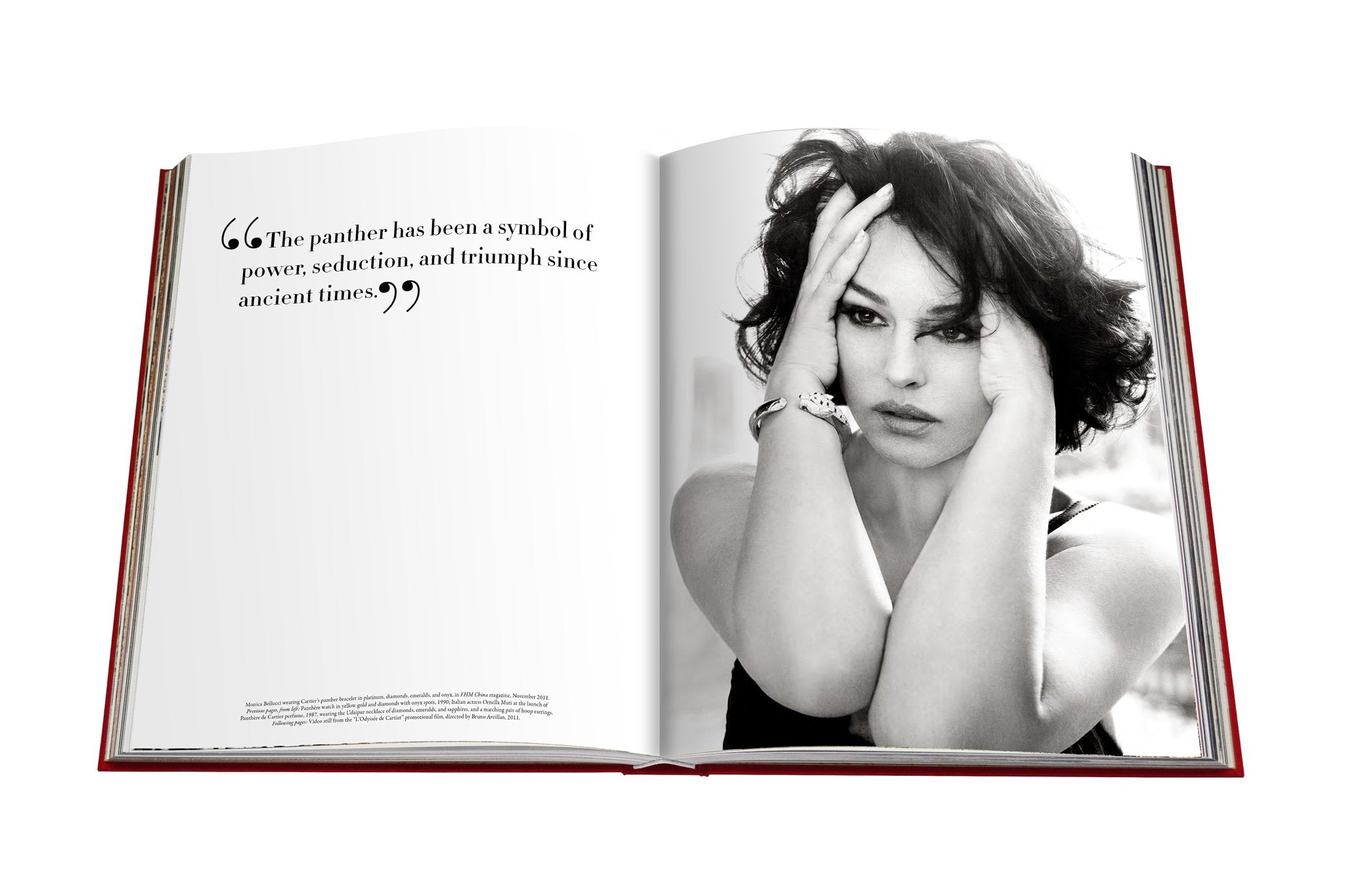 Cartier panthere book by brnice geoffroy schneiter assouline cartier panthere assouline biocorpaavc Choice Image