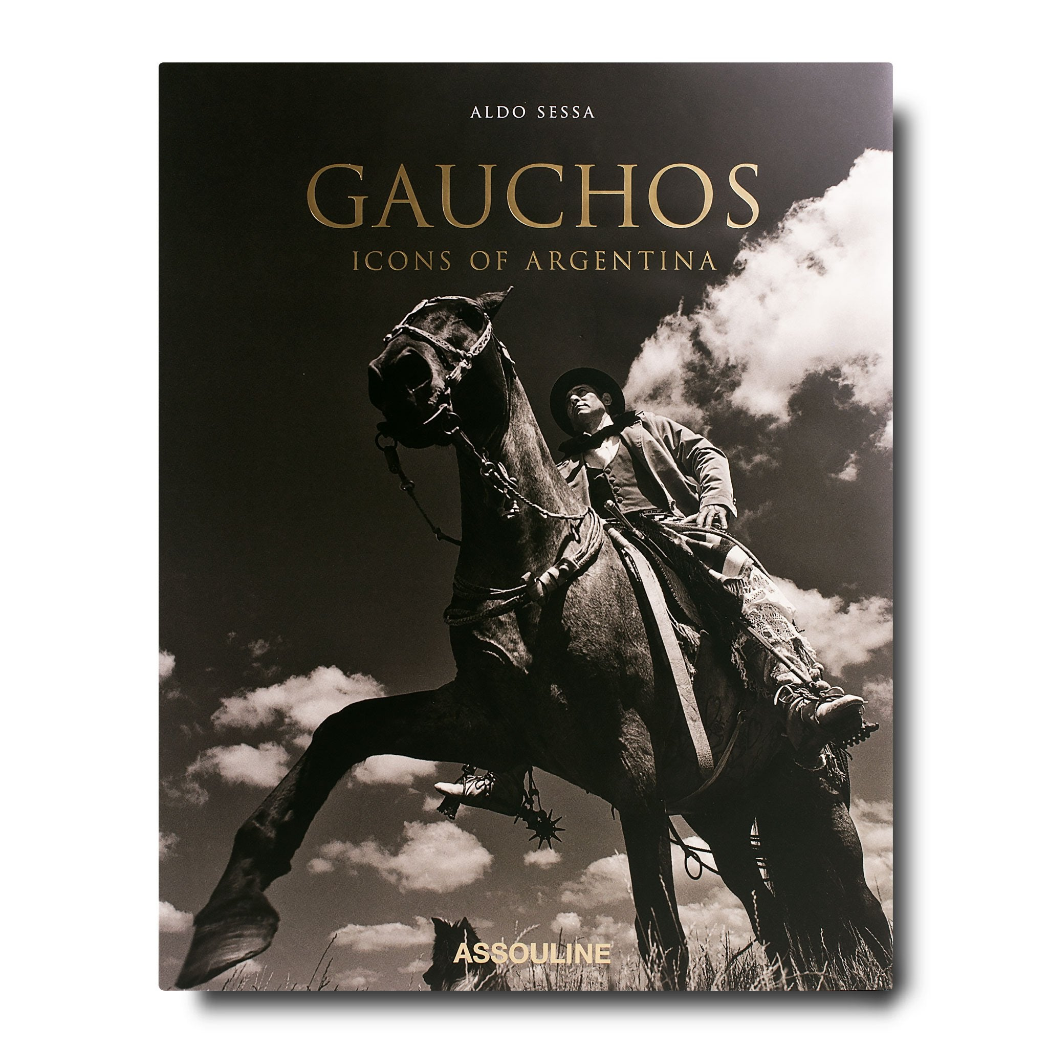 Gauchos icons of argentina book assouline assouline gauchos icons of argentina buycottarizona Gallery