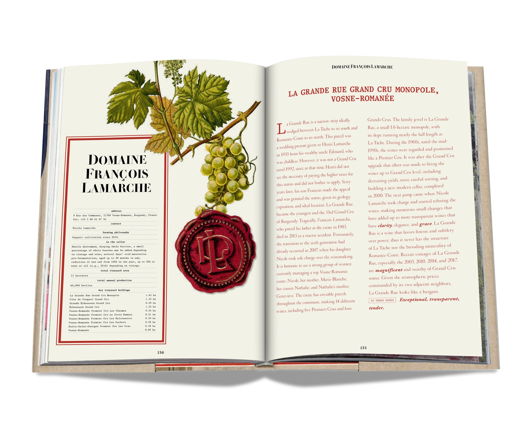 ASSOULINE Books The 100 Burgundy: Exceptional Wines to Build a Dream Cellar