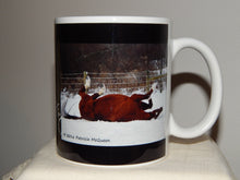 Fast Market Mug: Markie Rolling in the Snow