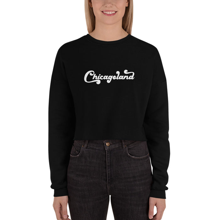 Chicagoland Crop Sweater