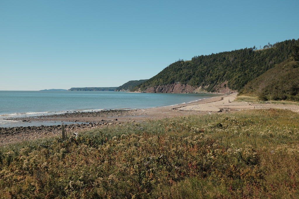 fundy coast