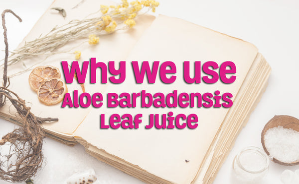 Why We Use Aloe Barbadensis Leaf Juice