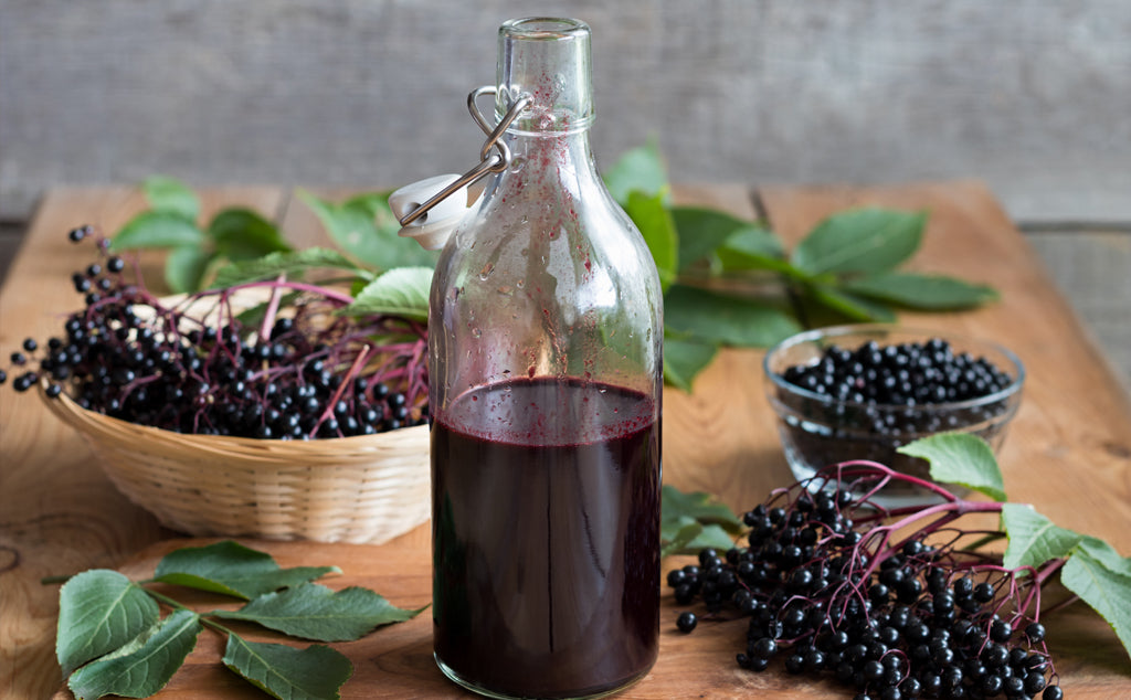 Benefits of Elderberry For Kids