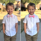 Gingham & Rosey Small Bow &/or Bow Tie